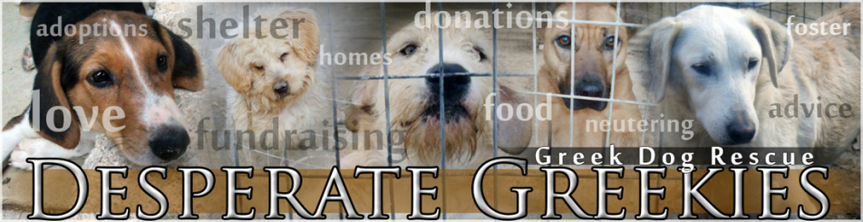 www.desperategreekiesdogrescue.com, Dog rescue.